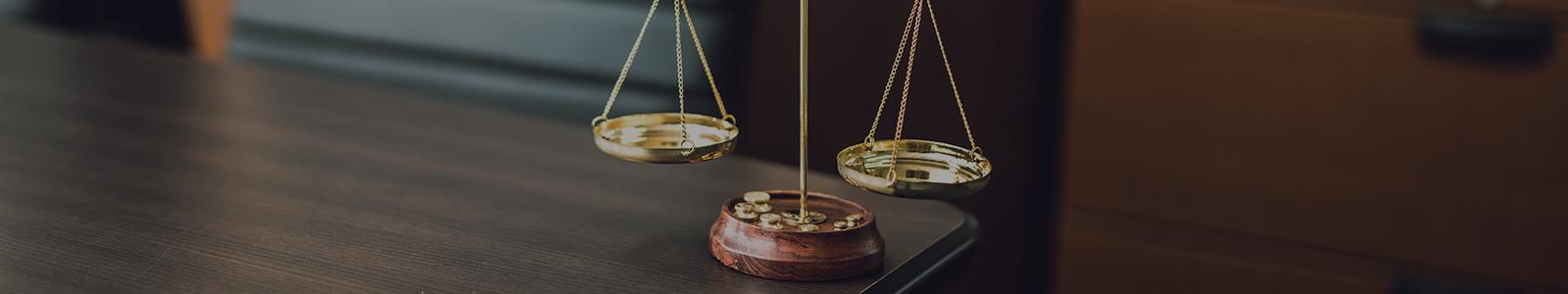 弁護士法人京都亀岡さつき法律事務所  取扱分野